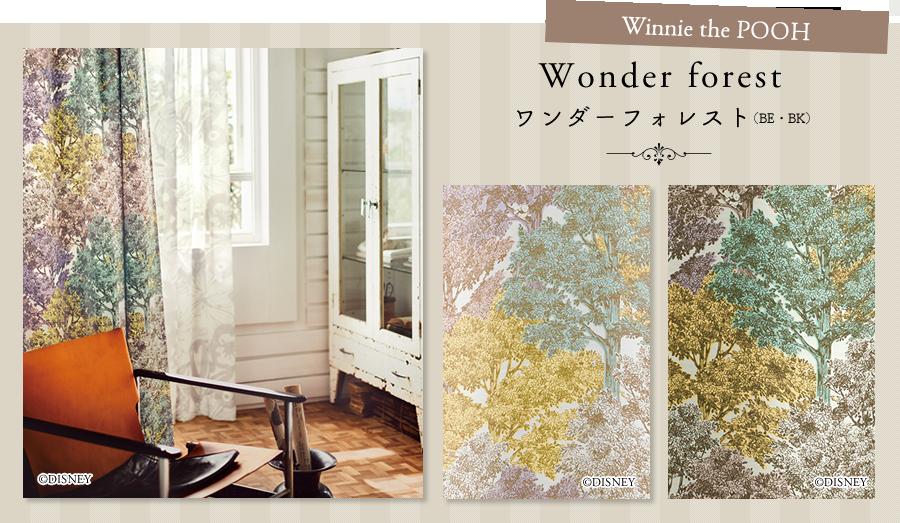 Wonder forest ワンダーフォレスト