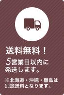 送料無料! ●営業日以内に発送します。 ※北海道・沖縄・離島は別途送料となります。